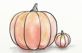 Small Pumpkins Great Results Using Pumpkin Seed Oil For Hair Loss 24 Weeks