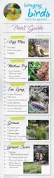 small native plants for australian gardens best plants to bring birds to your garden about the garden magazine