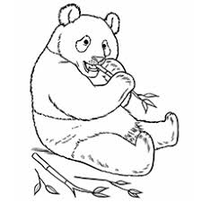 printable zoo animal coloring pages top 25 free printable zoo coloring pages online zoos free