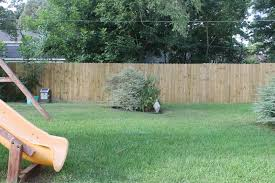 outdoor and patio dog ear cut backyard fence mixed with cream fur