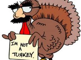could you survive thanksgiving as a turkey playbuzz