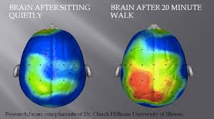 Is It Good To Exercise Before Bed What Happens To Our Brains When We Exercise And How It Makes Us Happie