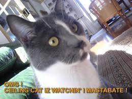 Ceiling Cat Meme - omg ceiling cat iz watchin cat meme cat planet cat planet