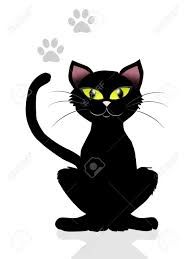 black cat stock photo picture and royalty free image image 19871134