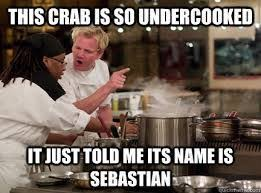 Funny Chef Memes - 14 best chef ramsy images on pinterest ha ha funny stuff and