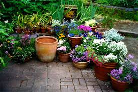 Potted Garden Ideas Deck Or Patio For The Home Pinterest Gardens Garden