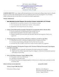 executive curriculum vitae curriculum vitae of e y appiah