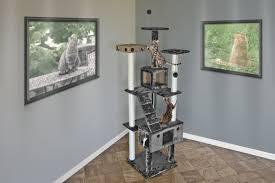 Nails Is Nuts The Daily Upper Decker - tucker murphy pet elvira double decker playground cat tree