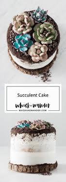 edible white dirt best 25 edible succulents ideas on