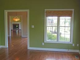 Light Green Paint Colors by Decoration Ideas Classy Home Interior Decoration With Light Green