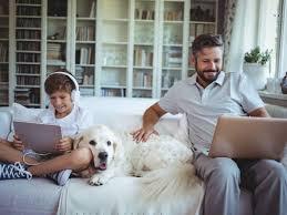 home depot black friday dog retailmenot best buy black friday in july home depot redbox