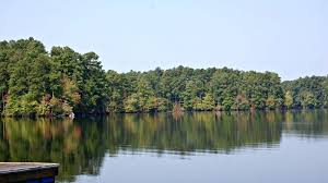 Tennessee lakes images Natchez trace state park tennessee state parks jpg