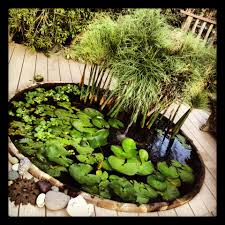 how to turn a spa into a pond garden ponds tubs and tubs