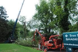 landscape hardscape snow removal tree care services
