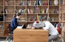 au bureau prix coussin sieste bureau coussin a enfiler pour faire dodo au bureau