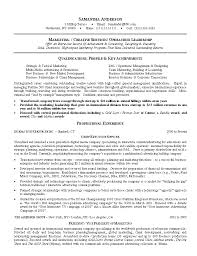 Resume In English Examples by Marketing Resume Sample Berathen Com