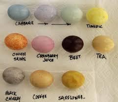natural easter egg dyes dr kellyann