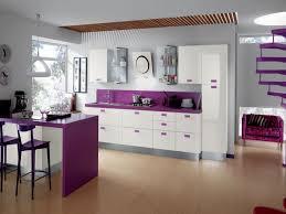 kitchen 2017 purple kitchens design ideas 2017 purple air max