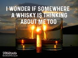 Whisky Meme - i wonder if somewhere a whisky is thinking about me too funny meme