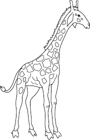 kidscolouringpages orgprint u0026 download cartoon giraffe coloring