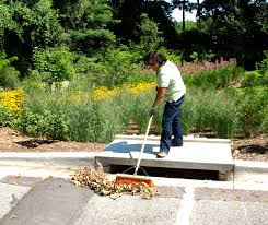 keep your storm drain clean