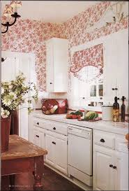 Country Cottage Kitchen Ideas Best 25 Red Country Kitchens Ideas On Pinterest Country Kitchen
