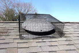 installation of critter proof attic fan vent cover for squirrel