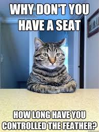 Success Cat Meme - success cat meme annesutu