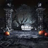 Halloween Backdrop Halloween Backdrops Sale Halloween Photography Backgrounds