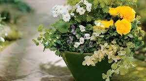 Garden Pots Ideas 58 Cool Container Gardens Sunset Magazine