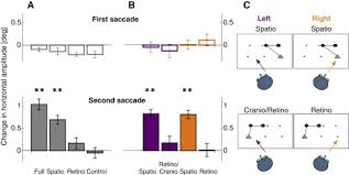 spatiotopic visual maps revealed by saccadic adaptation in humans