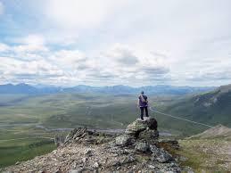 brilliant colors of denali national park alaska wallpapers 33 best alaskan adventure images on pinterest healy alaska