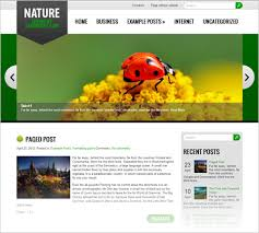 20 best free responsive wordpress themes 2013 with premium features
