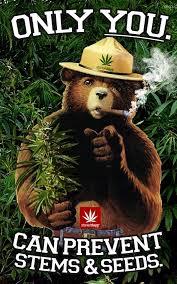 Smokey The Bear Meme - cartoons smoking pot man gets workers comp for getting