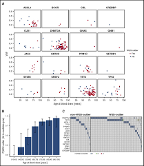 clonal hematopoiesis with and without candidate driver mutations