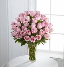 Long Stem Rose Vase Three Dozen Long Stem Pink Roses Vase Arrangement In Modesto Ca