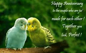Best Wishes For Wedding Couple The 80 Best Wedding Anniversary Greetings Of All Time The Wondrous
