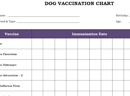 dog vaccination chart printable template productivity checklists