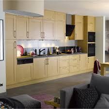 porte cuisine chene meuble de cuisine chêne clair delinia cyclone leroy merlin