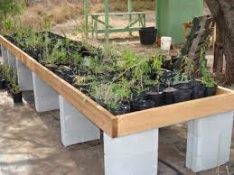 native plant nursery