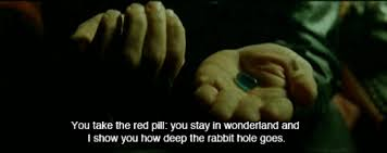 red matrix gif the matrix rabbit gif find share on giphy