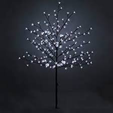 stick trees with lights lighting