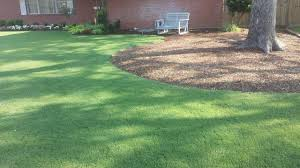 alternative to landscape blade the lawn forum