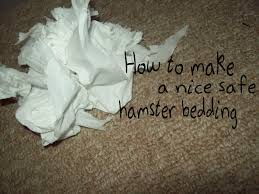 Newspaper Bedding How To Make A Safe Nice Hamster Bedding Youtube