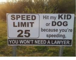 Dog Lawyer Meme - speed hit my kid limit or dog 25 because you re speeding you won t