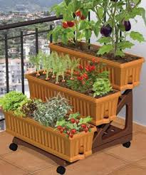 balcony container vegetable garden may 2012 youtube container
