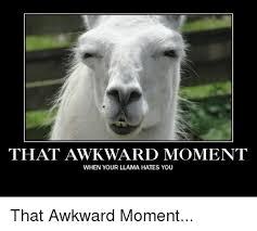 Llama Meme - that awkward moment when your llama hates you that awkward moment