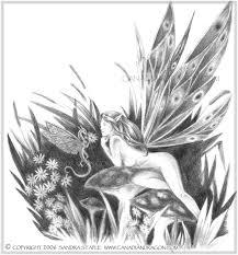 pencil drawings of flowers art drawing art u0026 skethes