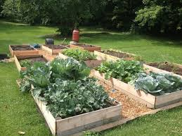 gardening tips for every space the organic kitchen blog and