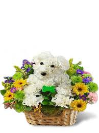 flower delivery miami s best friend flowers flower delivery miami